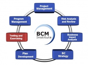 BCM Planning Methodology TE.jpg